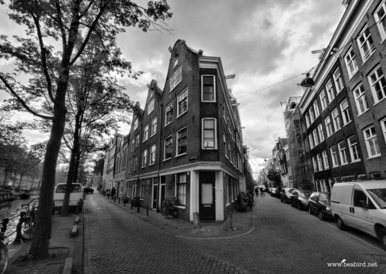 Travel Postcard - Amsterdam, Canal Houses