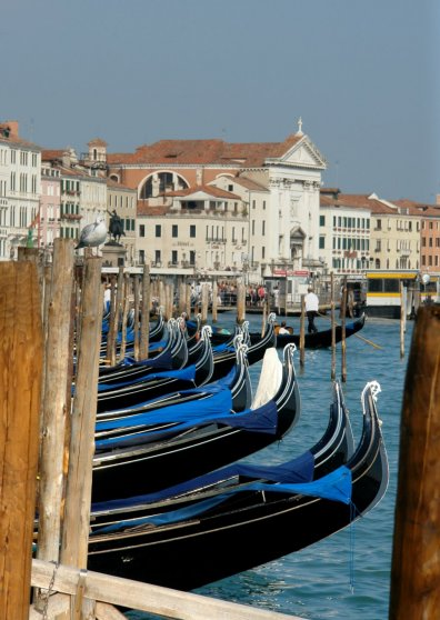 Travel Postcard - Venice, Italy