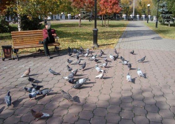 Travel Postcard - man on a bench
