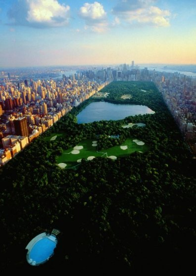 Travel Postcard - New York City - Central Park